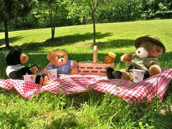 Don't forget to bring your picnic basket and favourtie teddy bear to Linder's Field Local Nature RTeserve, Buckhurst Hill on Wednesday, August 28