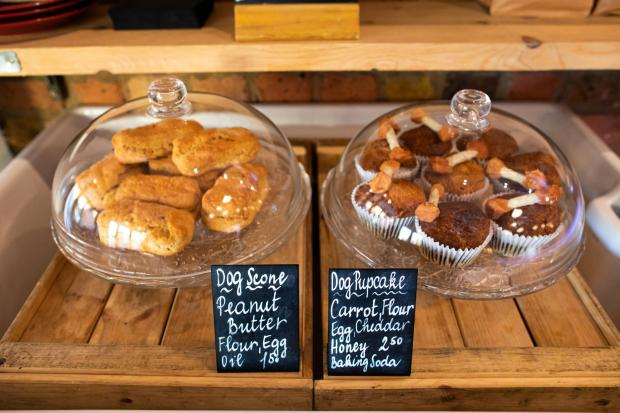 This Is Local London: Treats at Wags N Tales in London