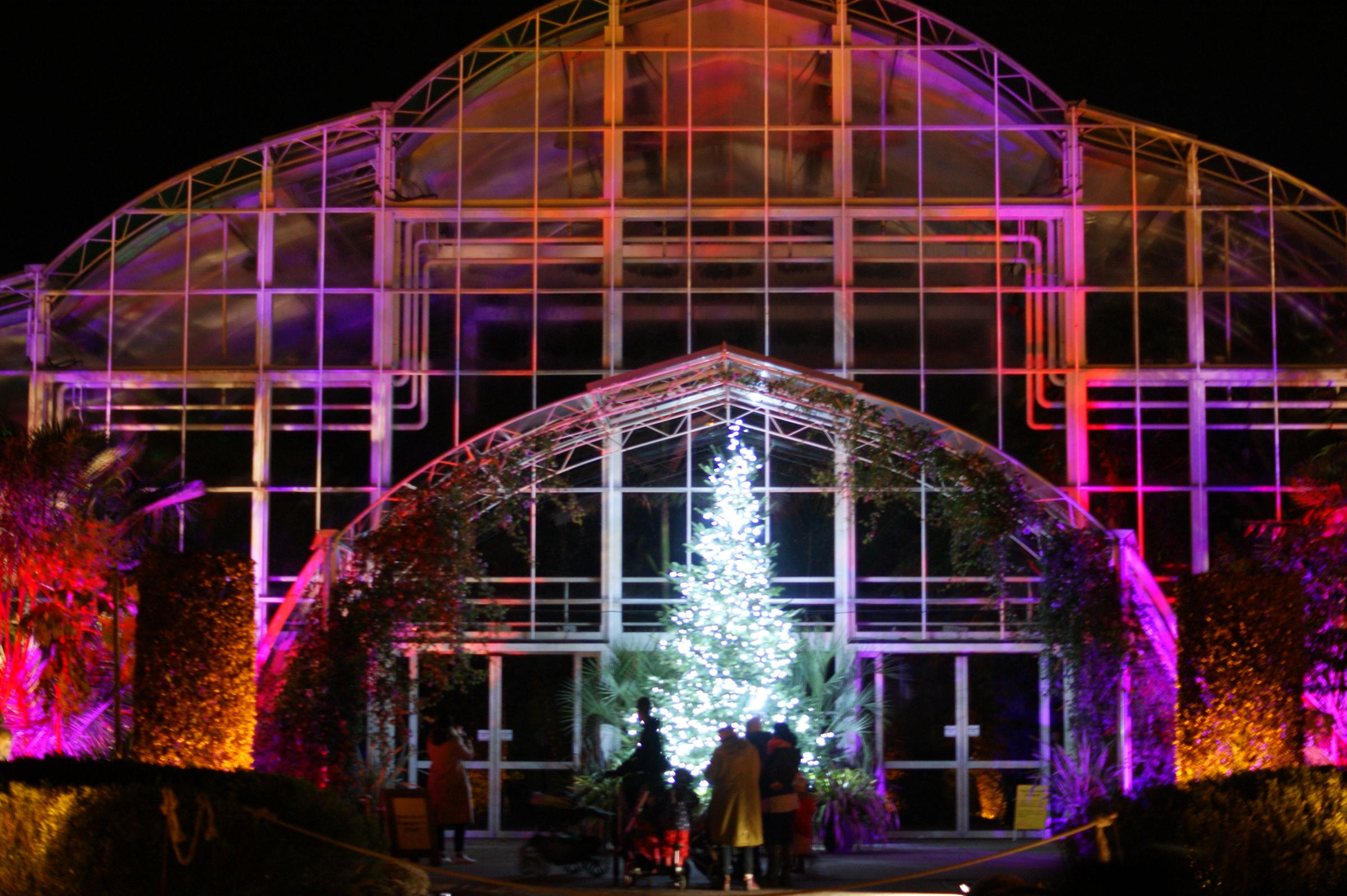Review Of Rhs Garden Wisley Glow This Is Local London