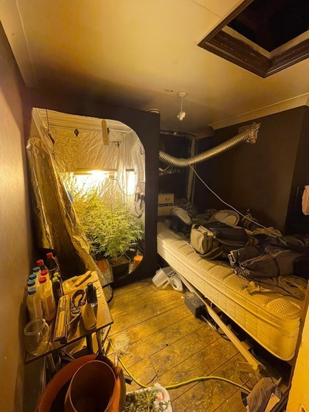 Cannabis factory busted in Thamesmead, south east London