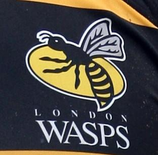 Wasps under new ownership