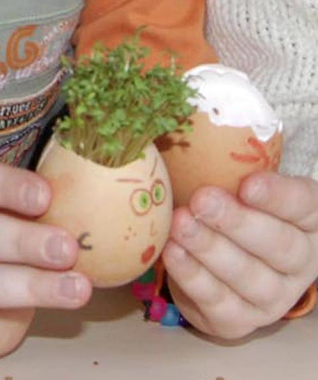 Free cress giveaway in Keston as part of garden centre spring celebration