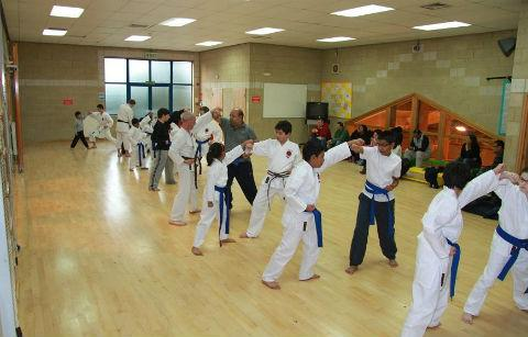 A TISKA Karate lesson in progress