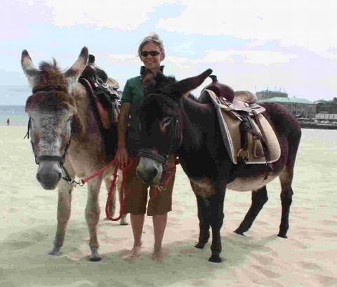 This Is Local London: RIDES: Melanie Rush with the beach donkeys