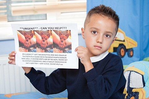 Harvey, 6, holds a poster appealing for help to find Coco