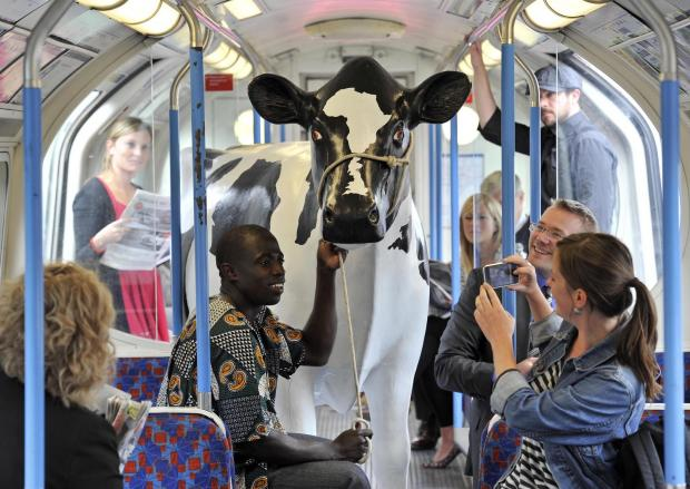 Ugandan farmer Peter Bulukaake takes the Tube with the fibreglass cow at London Bridge