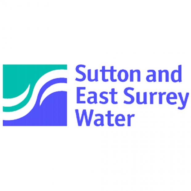 'Implications of proposed Sutton and East Surrey Water company sale cannot yet be assessed'