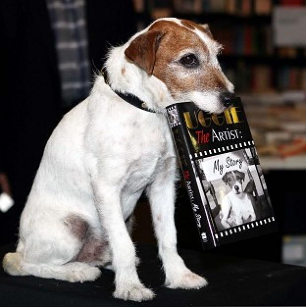 Uggie the dog, star of the Oscar-winning film The Artist, has published his memoir