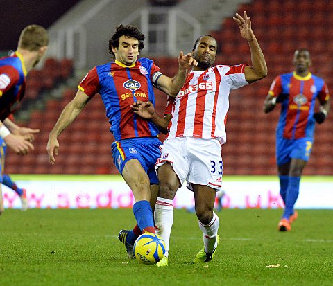 Wanted man: Mile Jedinak has attracted interest from Premier League Stoke City, but the skipper says nothing is happening on that front