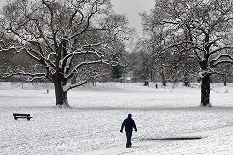 Snow scenes in Enfield Town Park on Monday