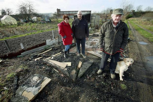 Plotholders Helen Toumazou, Kyriakos Angeli and Bill Chapman in the Alma Road allotments