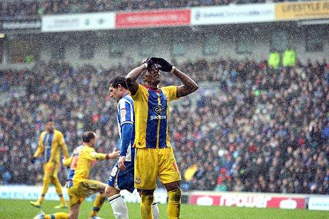 Calm down and carry on: Defeat at Brighton was just that, a defeat