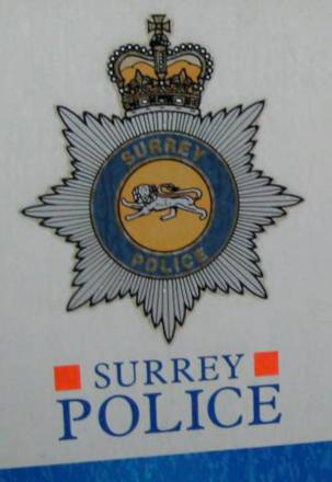 Witnesses sought: Call Surrey Police