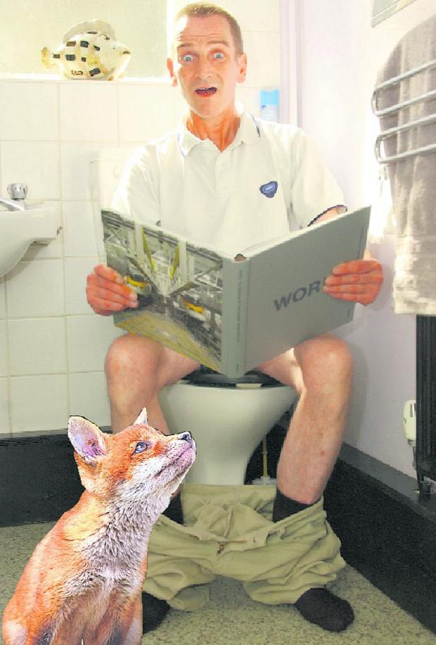 This Is Local London: Anthony Schofield says he was attacked by a fox which burst in on him as he sat on the toilet