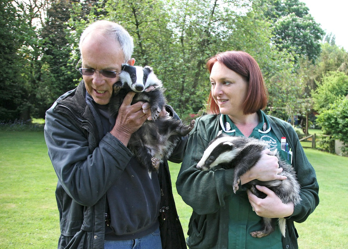 The Wildlife Aid Foundation is a leading animal hospital based in Leatherhead