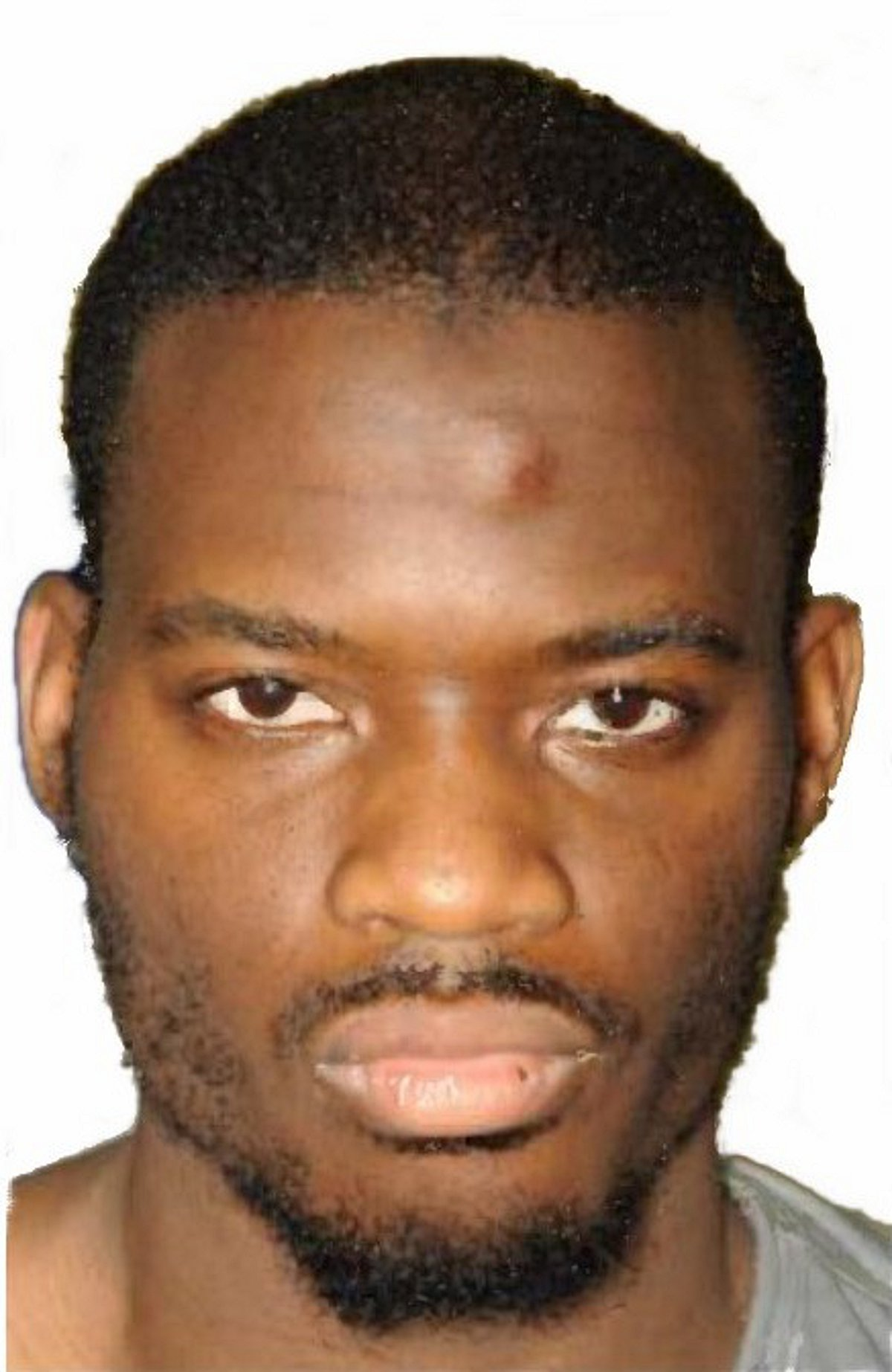 Michael Adebolajo appeals conviction for Lee Rigby Woolwich murder