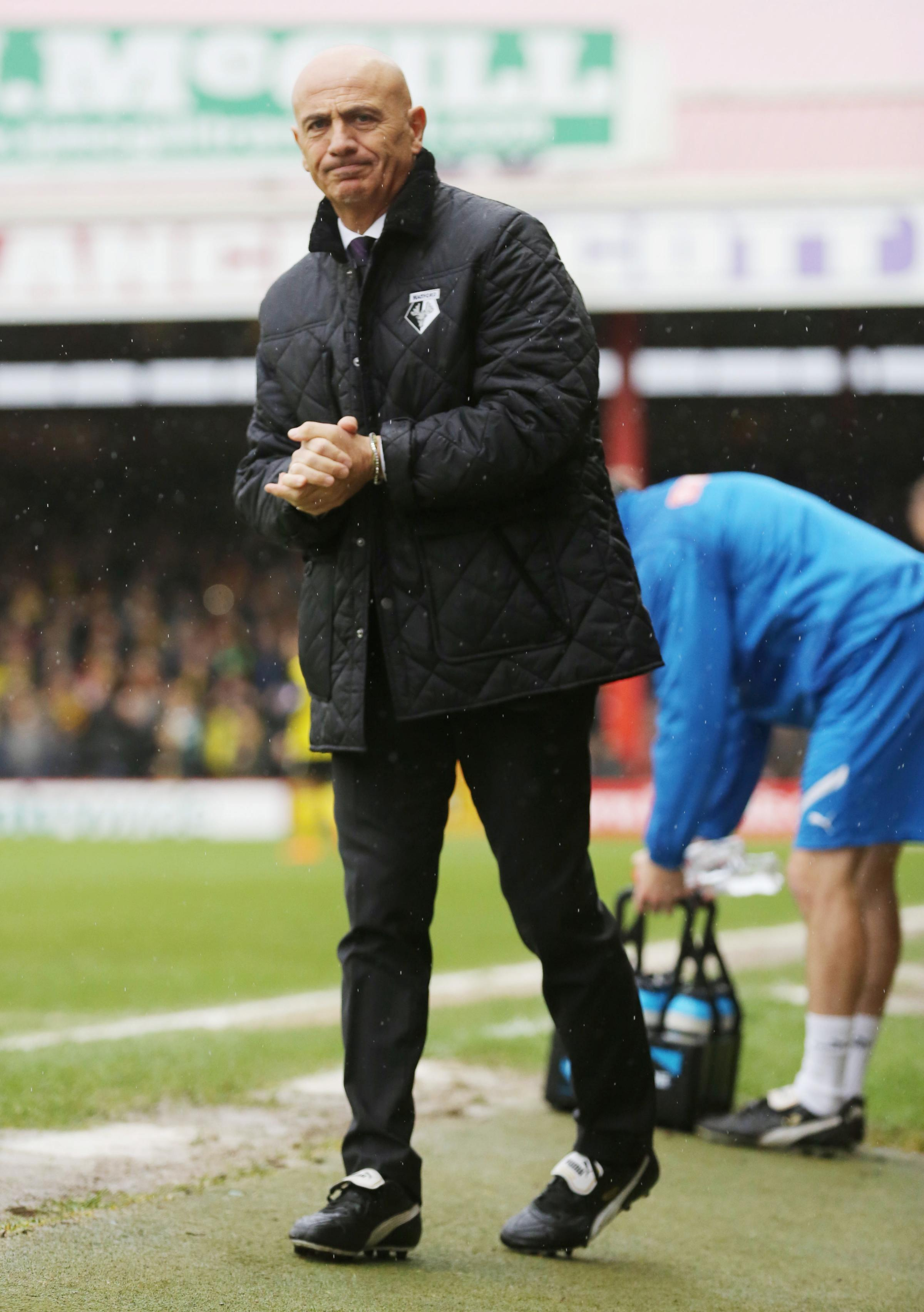Suited and booted: Beppe Sannino during Watford's 1-1 draw with Bristol City. Picture: Action Images
