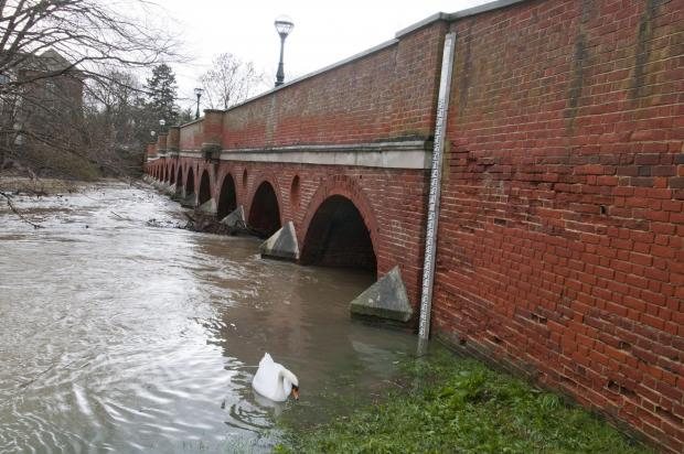 This Is Local London: River Mole rise sparks flood fears in Leatherhead