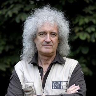 Brian May celebrated getting good news from