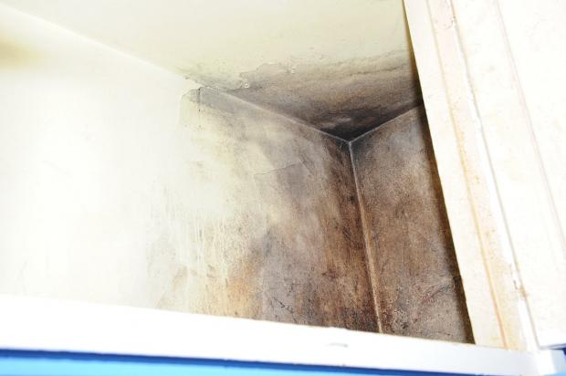 This Is Local London: Mould in Victoria Nash's home