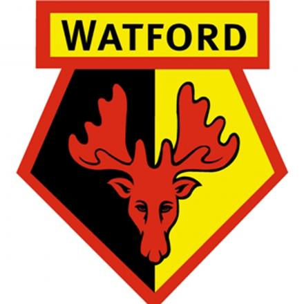 Watford to spend three weeks of pre-season in Italy
