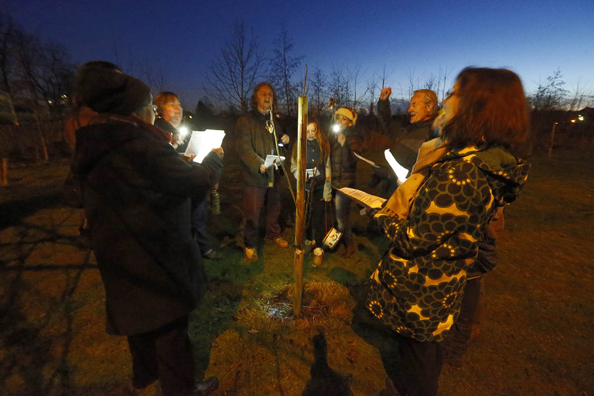Orchard blessed in wassailing ceremony