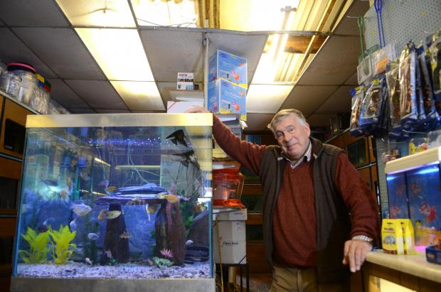 Aquapets owner Peter Hunt said no fish were hurt by the legless stranger