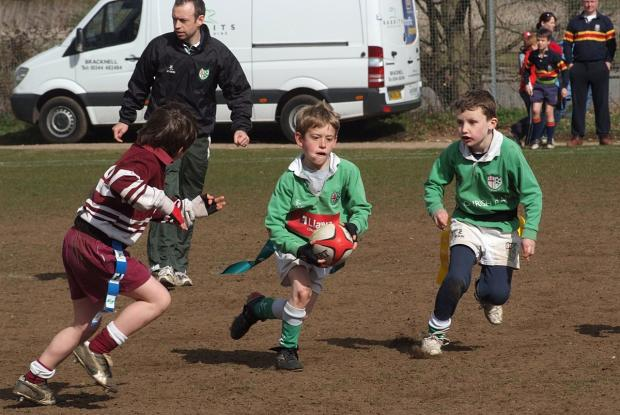 In peril: Mini rugby is likely to become dangerous under new RFU ruling, says Park coach