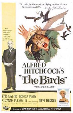 Origina poster for the 1963 film The Birds