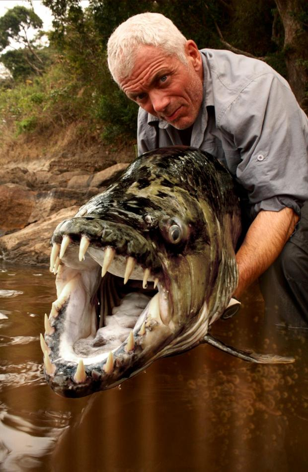 This Is Local London: Jeremy Wade, the presenter of TV show River Monsters. Photo: Daniel Huertas and Icon Films