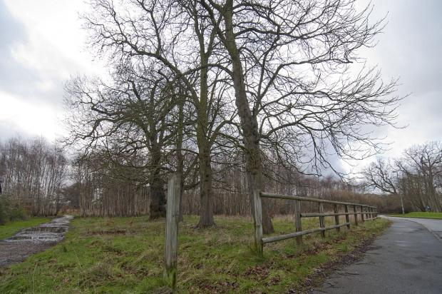 Areas of scrubland near the Manor Park housing development was on the shortlist to become a gypsy and traveller site
