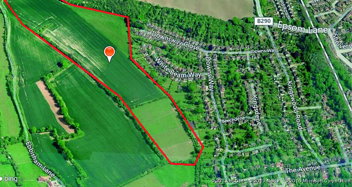 The map of the site, off Downsway Close, in Epsom Downs, on Kings Land's website