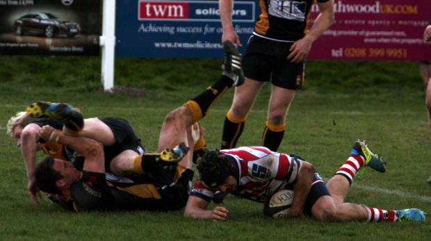 Still trying: Sam Shires goes over for Park at Esher            All pictures: David Whittam