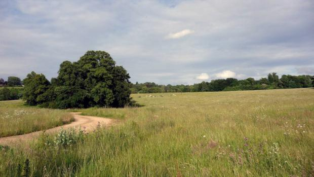 The rolling countryside at Cherkley Court