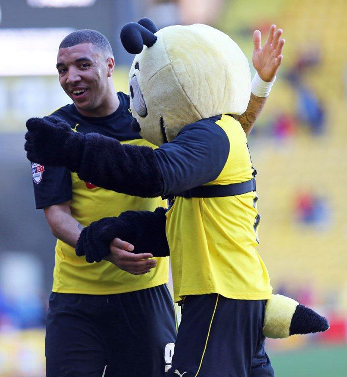 Troy Deeney celebrates scoring with Harry the Hornet