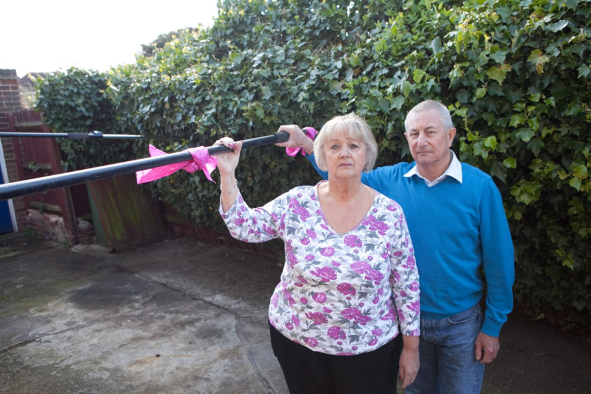 Gravesend couple frustrated by next door's big bush