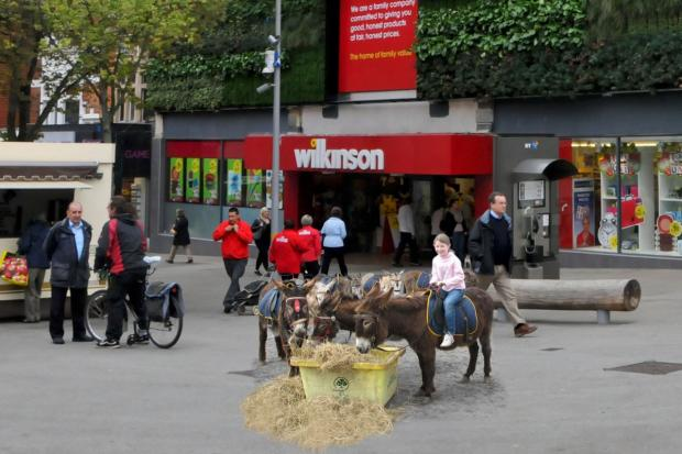 The donkeys got their first taste of Sutton on Saturday