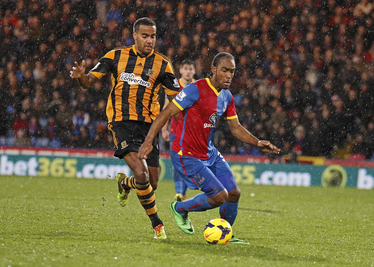 High praise: Cameron Jerome is loving Palace under the leadership of Tony