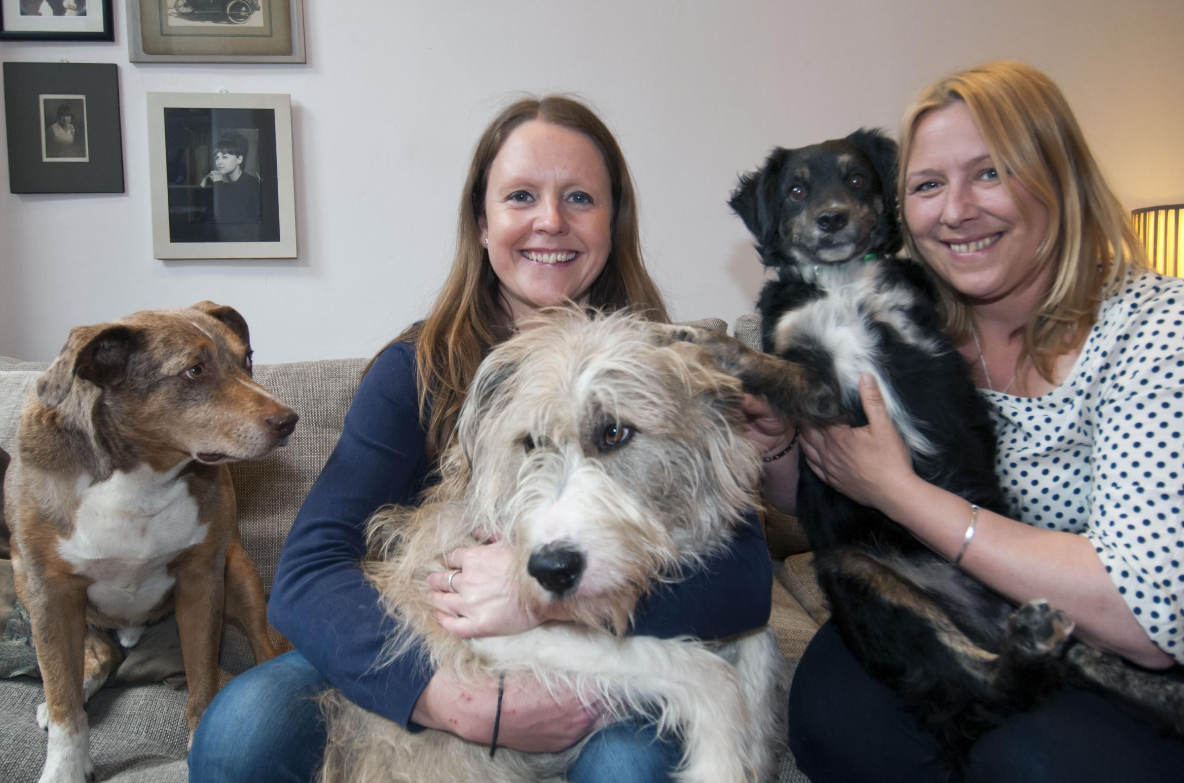 Jennifer Gilbert and Lisa Webster with their dogs in Cheam