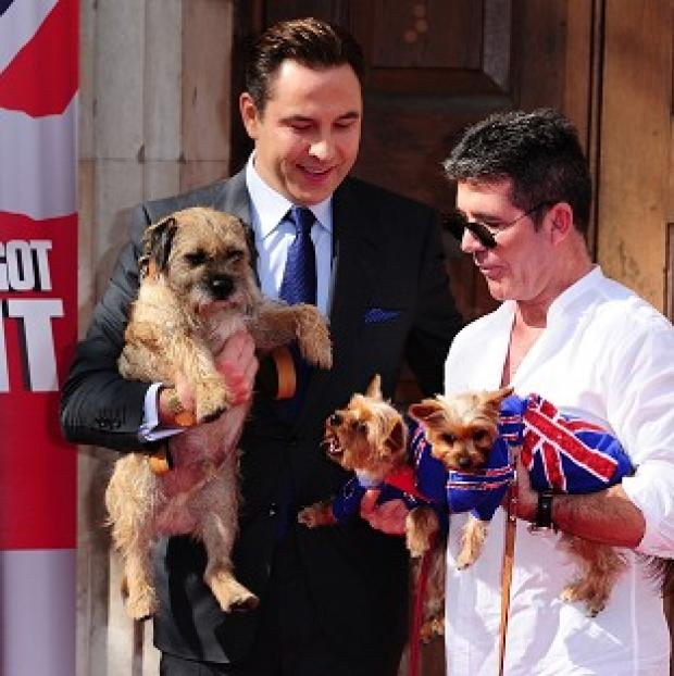 This Is Local London: David Walliams with his dog Bert and Simon Cowell with his dogs Squiddly and Diddly at the launch for Britain's Got Talent