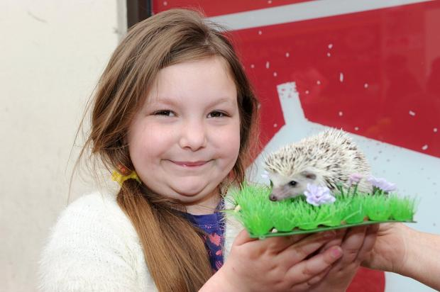 Erith shopping centre plans Pet Day