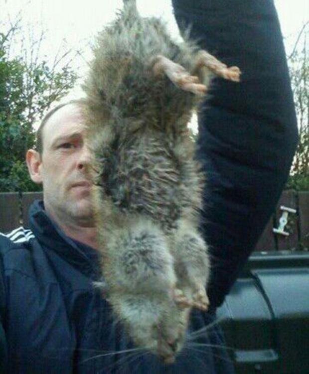 This Is Local London: Sé Mckendry said he has caught 58 of these