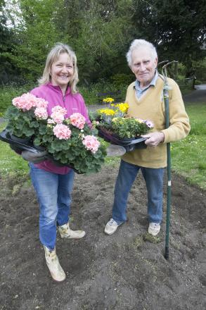 Ted Bamford plants new flower beds to