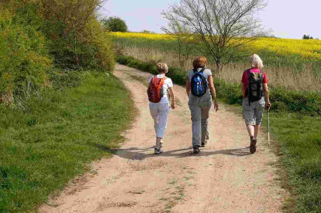 Greenwich walking events for National Walking Month
