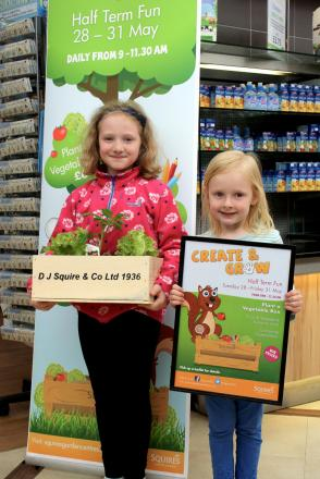 Grow on then: Create a vegetable box at Squire's this half term