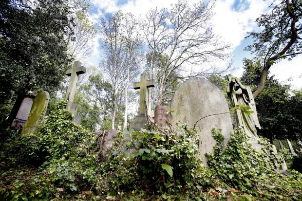 This Is Local London: The eerie setting of Highgate Cemetery is believed by some to be among the most haunted hotspots in north London