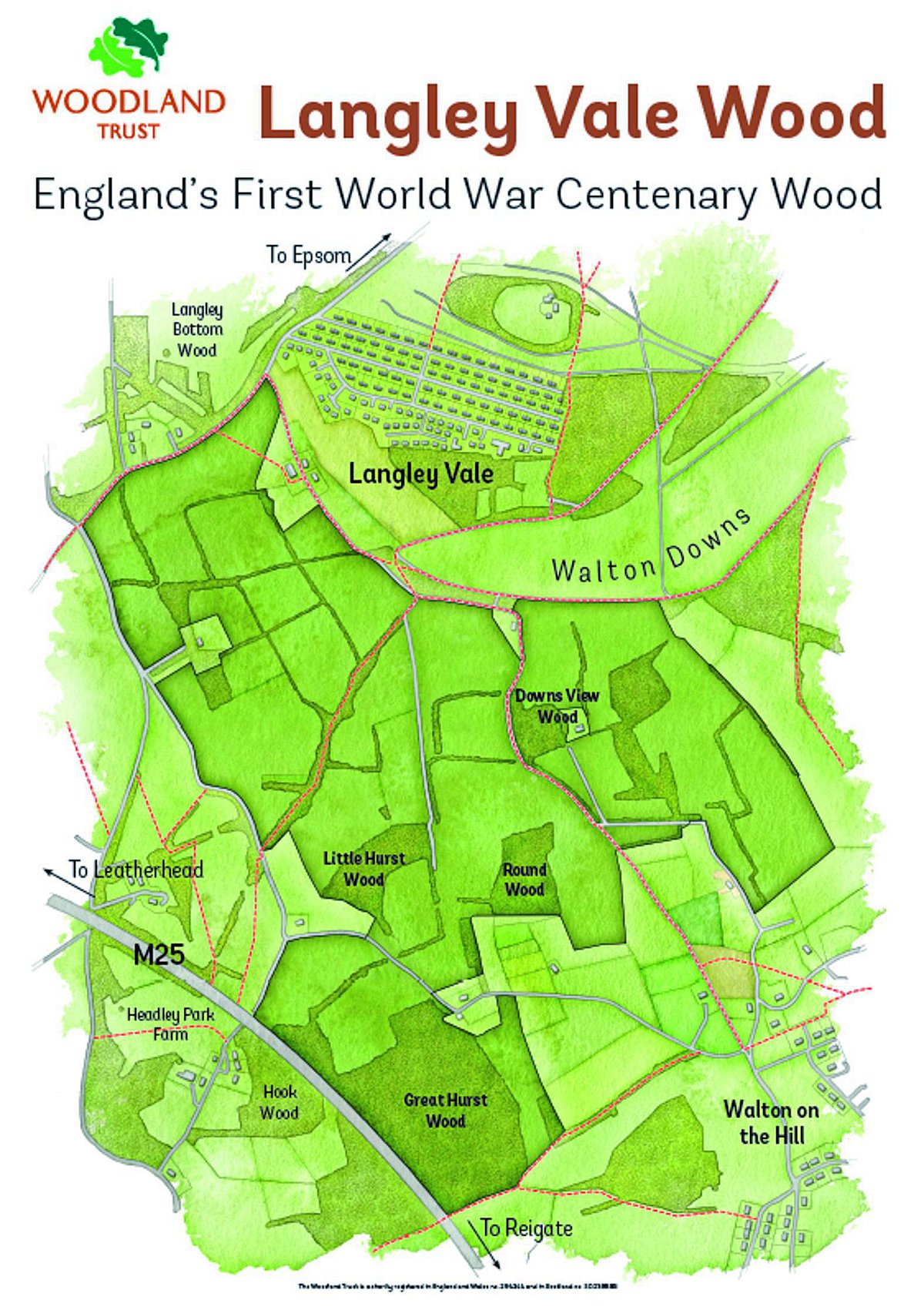 The Woodland Trust plans to create a Centenary Wood at Langley Vale farm