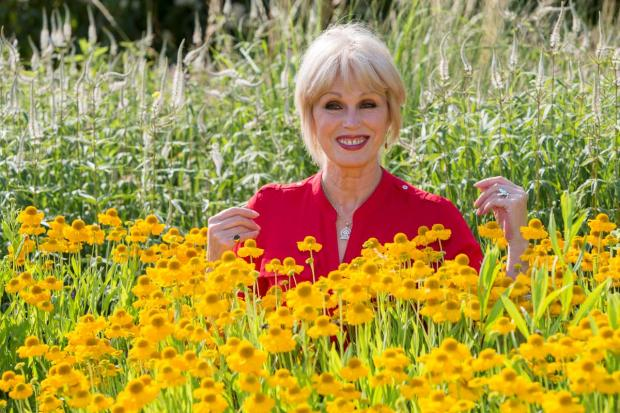 Joanna Lumley launches the Big Butterfly Count 2013 at London Wetland Centre