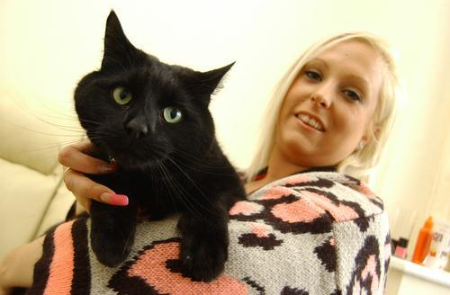 Orpington pet supplies shop loses woman's cat before she finds it in freezer