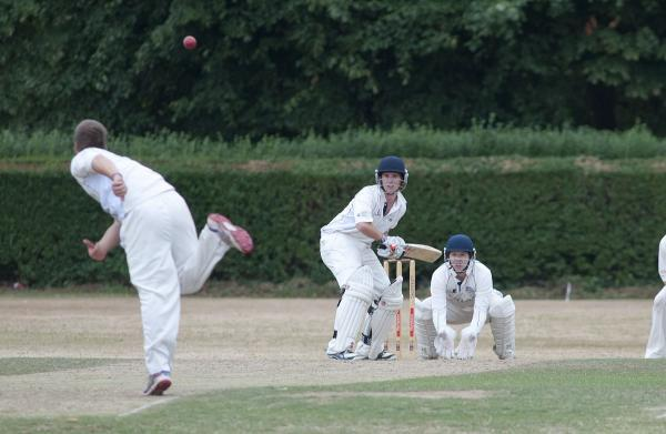 Not enough: Adam Dyson's, above, knock of 62 could not prevent defeat at Valley End for Leatherhead